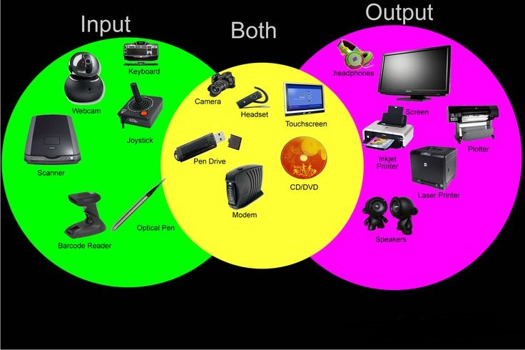 Difference Between Input and Output