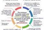 Difference Between Acidosis and Alkalosis - Acidosis vs Alkalosis