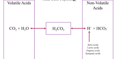 Difference Between Volatile and Non-Volatile Acids